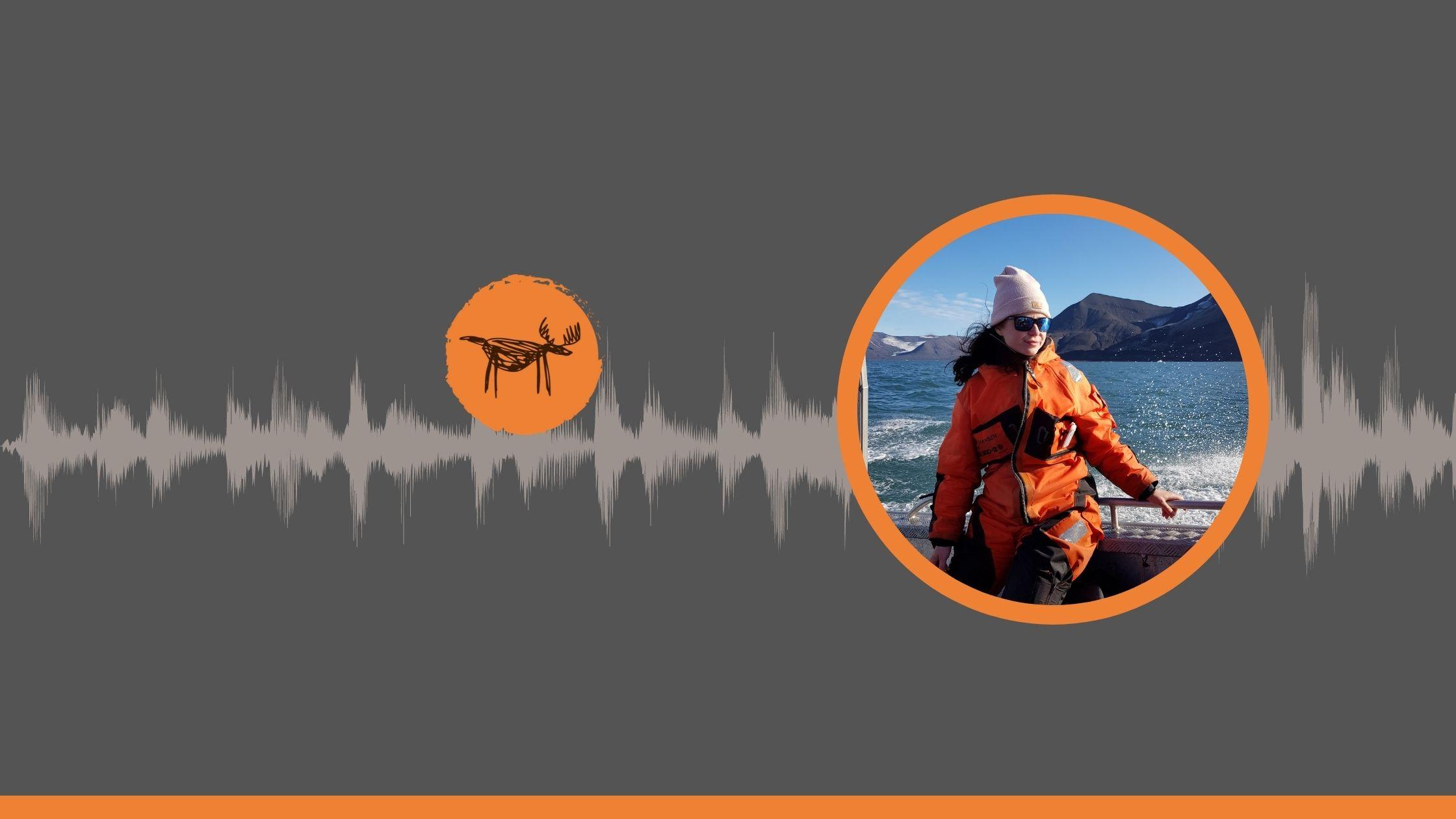 hornsund-svalbard-losiologia