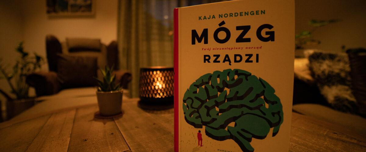 Okładka książki mózg rządzi